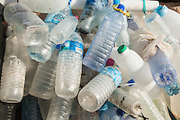 Plastic bottles with purified water washed ashore in a marine protected area as plastic pollution, De Hoop Marine Protected Area, Western Cape, South Africa