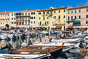 Fishing boats in harbor, Portoferraio, Elba, Italy.