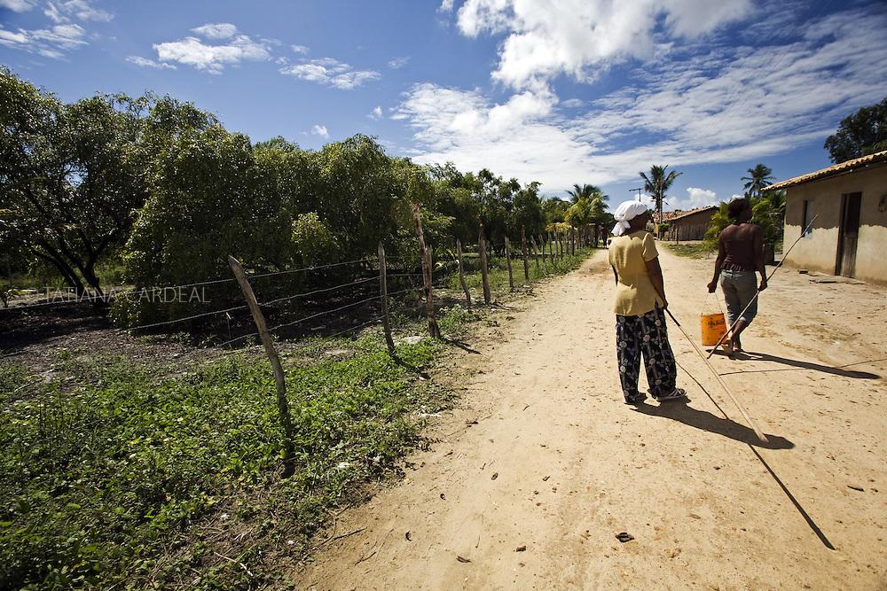No povodado de Pontal, áreas com mangabeiras cercadas pelo proprietários..