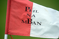 Flag at All ireland U14 C championship final in Kilkerrin-Galway Photo: Andrew Downes..
