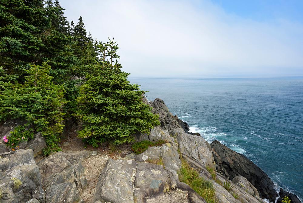 Rugged Maine Atlantic Ocean coastal environment Cutler, Maine, USA
