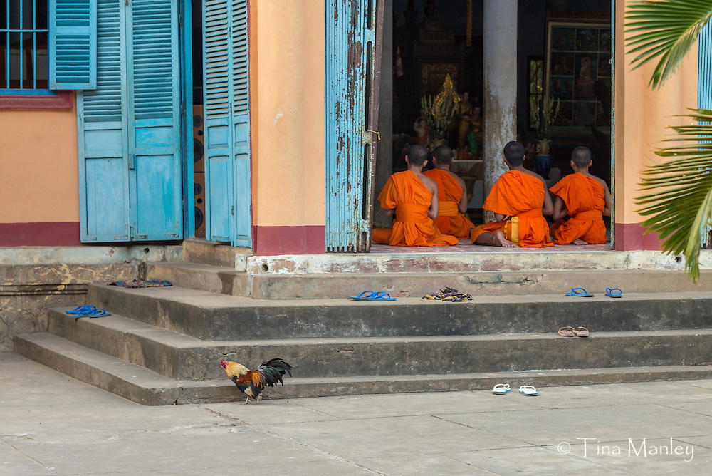 Vietnam&rsquo;s Khmer minority are almost all followers of Theravada Buddhism. Between the ages of 15 and 20, most boys set aside a few months to live as monks (they decide themselves on the length of service). Khmer monks are allowed to eat meat, but cannot kill animals.<br /> <br /> Read more: http://www.lonelyplanet.com/vietnam/mekong-delta/tra-vinh#ixzz3IyGSnaPP