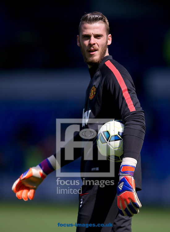 Manchester United goalkeeper David De Gea warms up before the Barclays Premier League match at Goodison Park, Liverpool<br /> Picture by Russell Hart/Focus Images Ltd 07791 688 420<br /> 26/04/2015