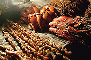 Africa. Tanzania. Zanzibar. Stone town..Lobster and crab claws at Fordhani gardens. Night time food stall market..CD0010