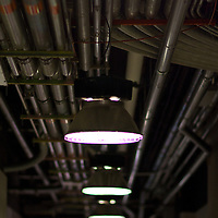 Lighting in a hallway with miles of conduit that pipes internet cables to various data centers in a new york city building.