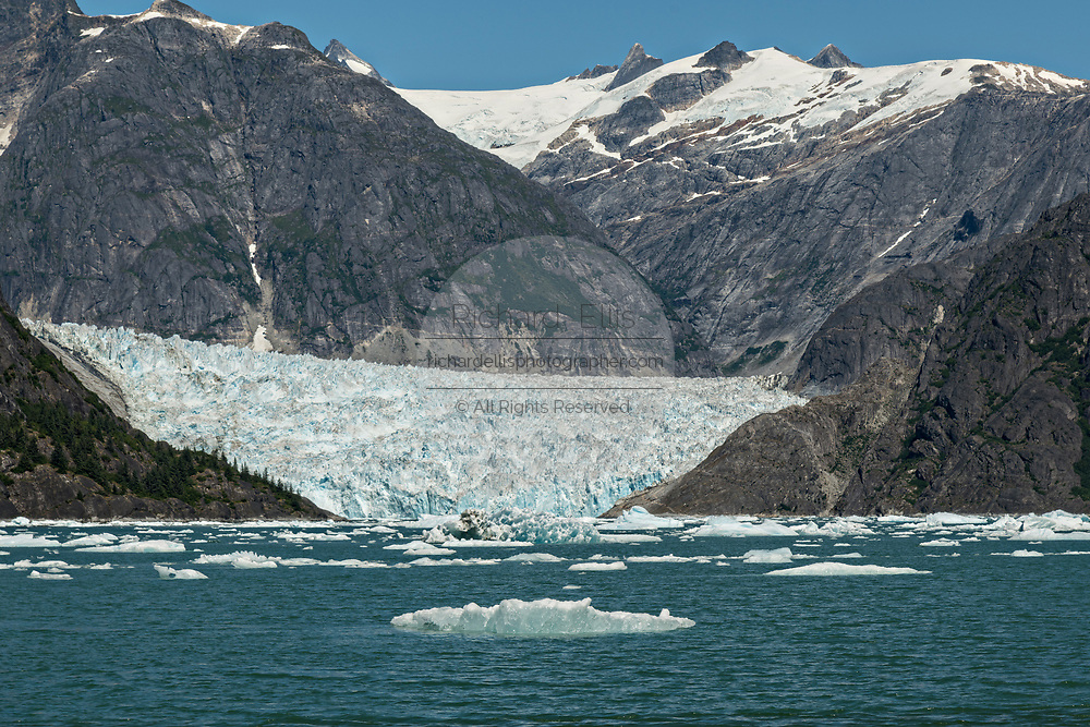 Small ice bergs known as bergy bits float in front of the LeConte Glacier near Petersburg Island, Alaska. The LeConte Glacier is the southernmost tidewater glacier of the Northern Hemisphere.