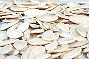 Pumpkin seeds - close up