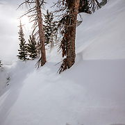 Tanner Flanagan skis the backcountry near Jackson Hole Mountain Resort in Teton Village, Wyoming.