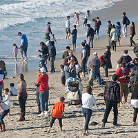 Dozens of beachgoers at Santa Monica on Monday, December 27, 2010