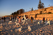 April Pine - SPIRIT - Sculpture By The Sea, Cottesloe 2018 - Photograph by David Dare Parker
