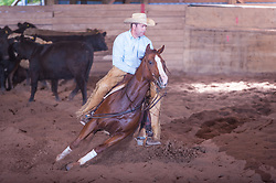 September 23, 2017 - Minshall Farm Cutting 5, held at Minshall Farms, Hillsburgh Ontario. The event was put on by the Ontario Cutting Horse Association. Riding in the Non-Pro Class is Eric Van Boekel on Mister Boss Hog owned by the rider.
