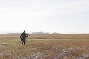 Traversetolo (Parma) - Scorty e Diletta sul campo di caccia.