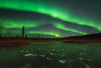 The aurora display only lasted a couple hours on this night before a snow storm moved in. But it was very bright and active. I shot most of it from a frozen pond a few minutes outside of Fairbanks. Methane bubbles were suspended in the ice.