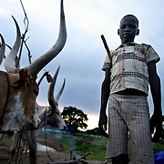 Panthar Machar, a 12-year-old catlle hearder, with his family's cows as the sun goes down over cattle camp. Panthar, a Dinka, lives in south Sudan, a poor isolated area home to the Dinka --  the impossibly tall and rugged pastoralists who after suffering 50 years of war are finally witnessing peace, development, and change.