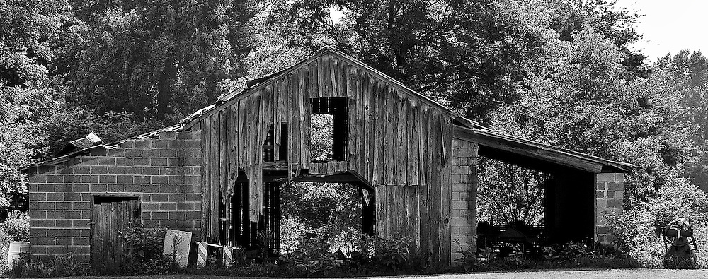 Pick any back road in tobacco country and you are sure to find 1 if not 5 barns similar to this one. They always look like they could fall down any day but year after year they are still standing and being used.