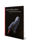 Avian Ambassadors of the Santa Barbara Bird Sanctuary was printed in 2018. This 48 page book features photos and entertaining stories of 24 parrots. All sales go directly to the Sanctuary for the care and rescue of unwanted and displaced companion parrots.