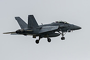 A McDonnell Douglas F/A-18F Super Hornet of Strike Fighter Squadron 102 (Diamondbacks), oart of the Carrier Air Wing Five,  landing at Naval Air Facility, Atsugi, near Yamato, Kanagawa, Japan. Wednesday January 29th 2020