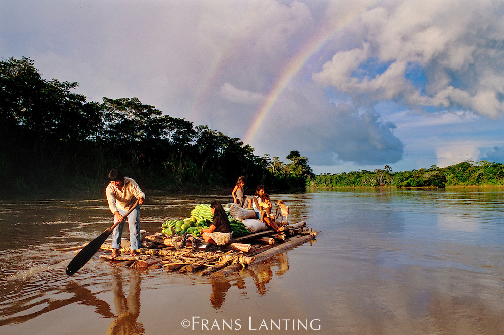 Machiguenga's settler's family floating produce to market, Tambopata River, Peru