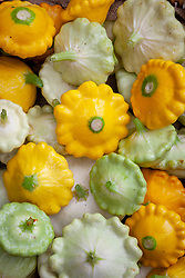 Mixed summer squash (Pattypan). Cucurbita pepo