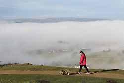 © Licensed to London News Pictures. 06/02/2017. Huddersfield, UK. A woman walks her dog on Castle Hill in the sunshine as thick banks of fog cover Huddersfield on a cold February morning in West Yorkshire. Forecaster are predicting heavy rain this week but none was in sight here as the sun began to shine and burn through the dense fog. Photo credit : Ian Hinchliffe/LNP