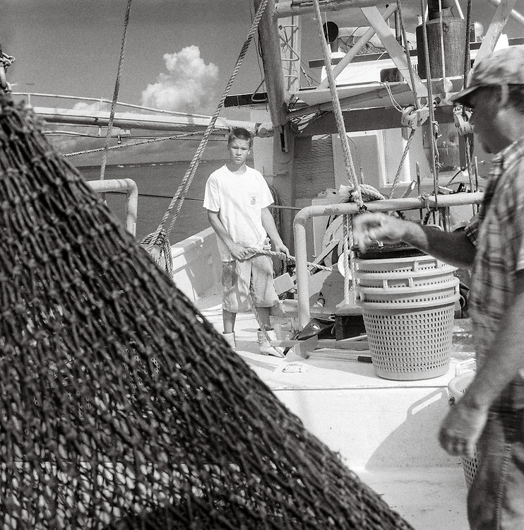 The Summer Job, Bringing in the Nets, 2006