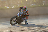 Central New York Half Mile - AMA Pro Flat Track - Elbridge, NY - August 20, 2016 :: Contact me for download access if you do not have a subscription with andrea wilson photography. :: ..:: For anything other than editorial usage, releases are the responsibility of the end user and documentation will be required prior to file delivery ::..