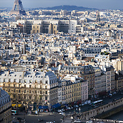 Paris (France). View of Paris from the towers of Notre-Dame