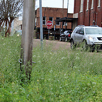 Overgrown spaces such as at the intersection of Quincy and Meridian streets are areas the Aberdeen Board of Aldermen wants to target through its newly approved beautification initiative.