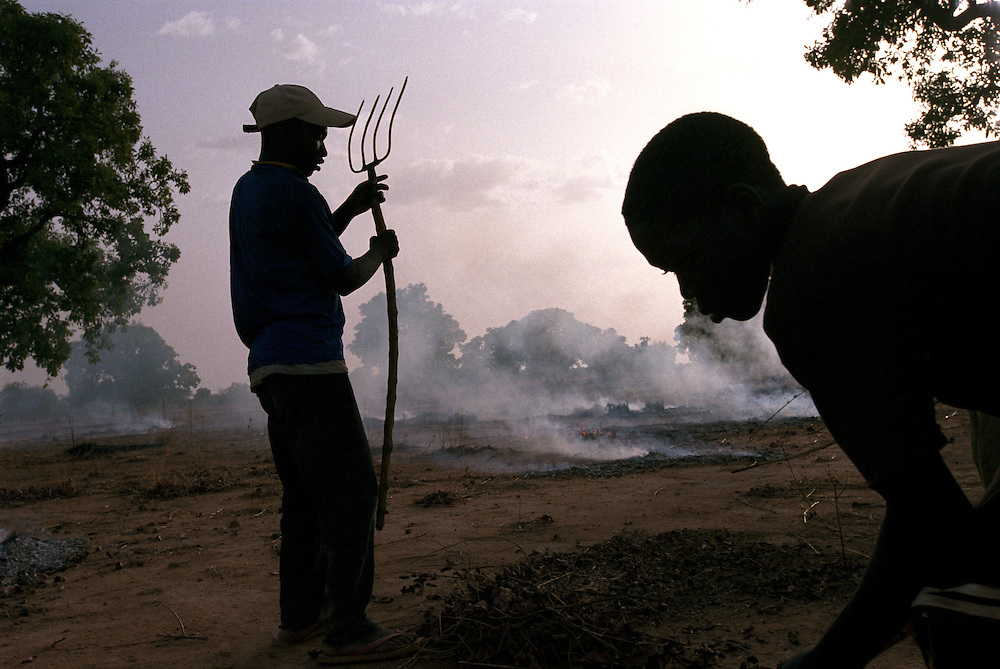 Young boys burn dried leaves and stems from last years harvest to prepare the land for planting before the beginning of the rainy season..Tanlili, Burkina Faso. 07/06/2004.Photo © J.B. Russell