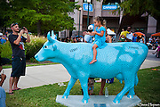 MAZY MOO, a piece in CowParade by Susi Alcantara, Austin, Texas, July 29, 2010.  CowParade is considered to be the largest and most recognized public art event in the world. Starting July 2011, about 100 cows painted by local artists went on display throughout Austin.