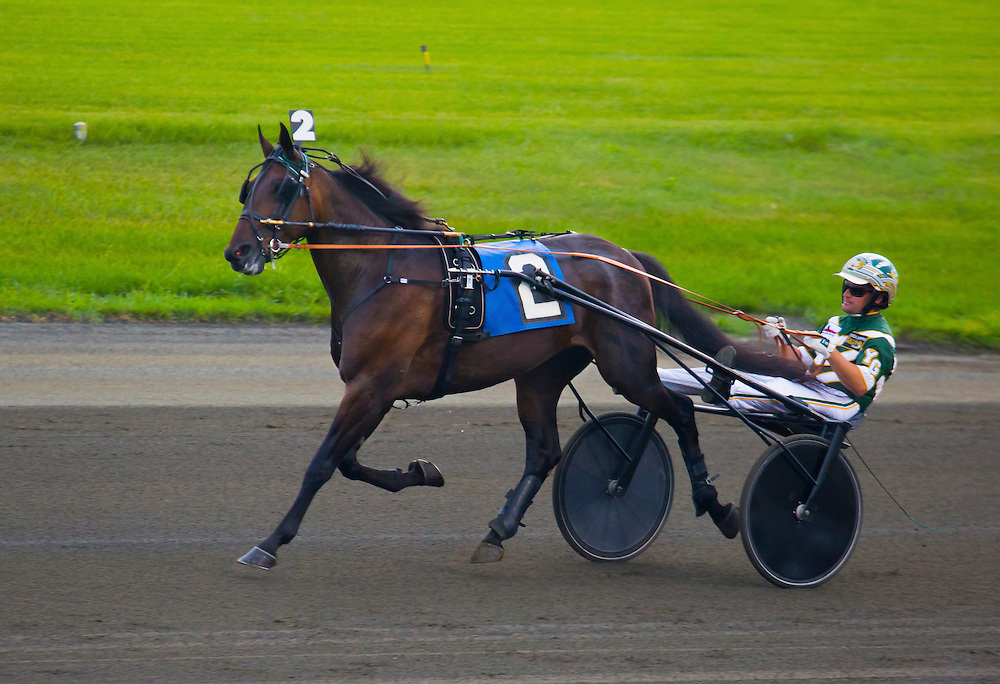Pinkman, number two, warming up before winning the Stanley Dancer memorial trot, at the Meadowlands in New Jersey last night. Pinkman was hard pressed and but held on gamely to prevail by a nose. Trotters have a different gate than pacers, who are the majority of harness racing horses. Their -- trotters -- gate is a diagonal one -- front left comes come down together with the rear right while the front right comes down with the rear left.