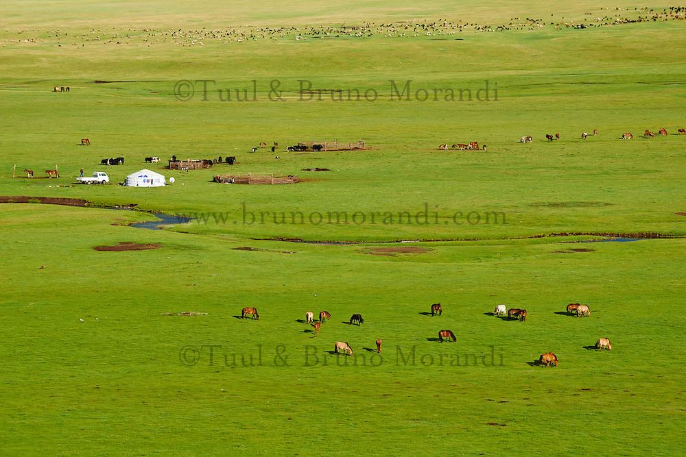 Mongolie, Province de Arkhangai, Vallee du Serpent campement nomade // Mongolia, Arkhangai province, Snake valley, Nomad camp