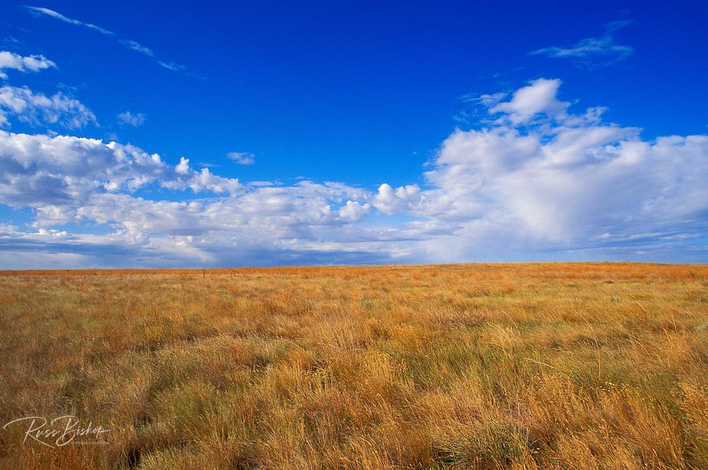 Clouds in blue sky over Buffalo Gap National Grassland, South Dakota, USA