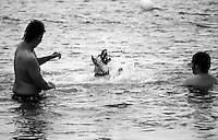 25/07/2010 Porto Cesareo Stabilimento balneare La Spiaggetta. Shela che gioca in acqua con il suo padrone...Il cane, considerato da sempre il miglior amico dell'uomo per il suo essere fedele e sempre alla ricerca di una carezza. Spesso abbandonati in mezzo alla strada, li ho osservati nei loro giochi e nelle loro stranezze, una serie di scatti che li immortala così come loro sono, autentici e buffi,  e spesso troppo ?umani?.