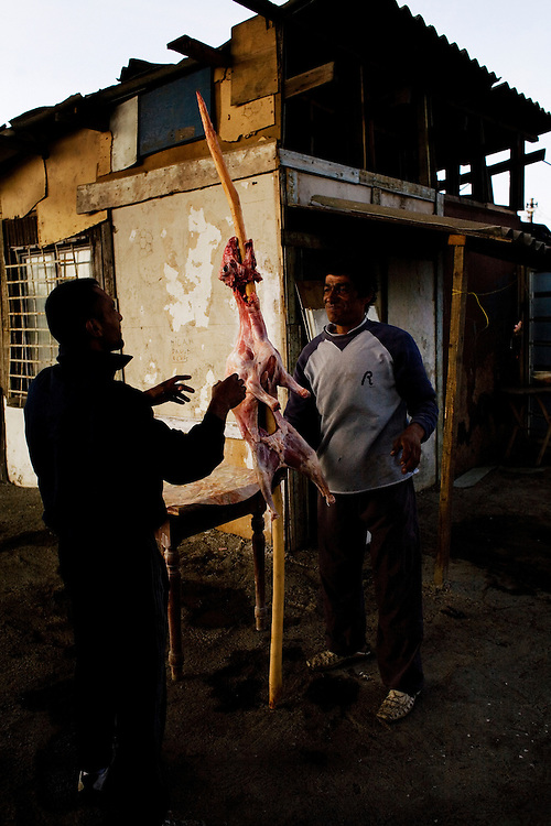 Preparations for the annual St. George's Day (Djurdjevdan) celebration which is highlighted by roast goat. Nova Gazela.