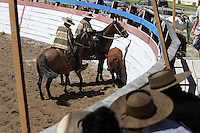 Rodeo at Futalefu, Chile
