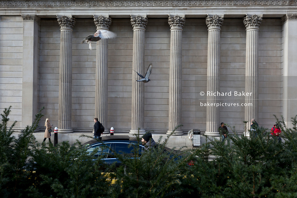On the day that Chancellor of the Exchequer Rishi Sunak unveiled a £30bn package to boost the economy and get the country through the coronavirus outbreak, two pigeons take flight towards the pillars and columns of the Bank of England as its governor Mark Carney cut the interest rate from 0.75% to 0.25%, on 11th March 2020, in the City of London, England.