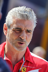 23.07.2015, Hungaroring, Budapest, HUN, FIA, Formel 1, Grand Prix von Ungarn, Vorberichte, im Bild Maurizio Arrivabene (Teamchef/Scuderia Ferrari) // during the preperation of the Hungarian Formula One Grand Prix at the Hungaroring in Budapest, Hungary on 2015/07/23. EXPA Pictures &copy; 2015, PhotoCredit: EXPA/ Eibner-Pressefoto/ Bermel<br /> <br /> *****ATTENTION - OUT of GER*****