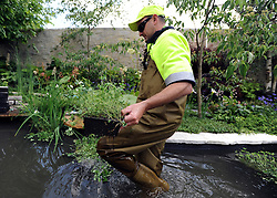 © under license to London News Pictures. LONDON, UK  19/05/2011.An exhibitor tends to the pond in his exhibit. Exhibitors ready their displays today (19 May 2011) ahead of The Chelsea Flower show in London. Every year the grounds of the Royal Hospital, London, are transformed into show gardens, inspirational small gardens and vibrant horticultural displays that make up the world's most famous flower show which runs from 24 May 2011 to 28 May 2011. Photo credit should read Stephen Simpson/LNP.