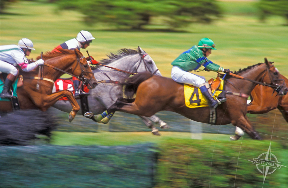 Steeplechase_In_The_Far_Hills.  Steeplechase horse racing.