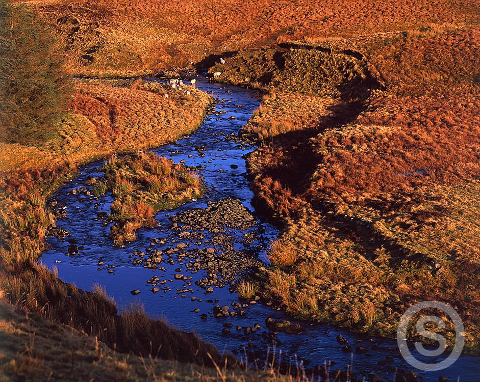 Photographer: Chris Hill, Glendun River, County Antrim