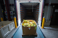 30 bags of fresh produce await delivery to one of a hundred non-profits helping the community with food and nutrition
