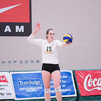 5th year outside hitter Jenna Krahn (15) of the Regina Cougars during the home game on January 6 at Centre for Kinesiology, Health and Sport. Credit: Arthur Ward/Arthur Images