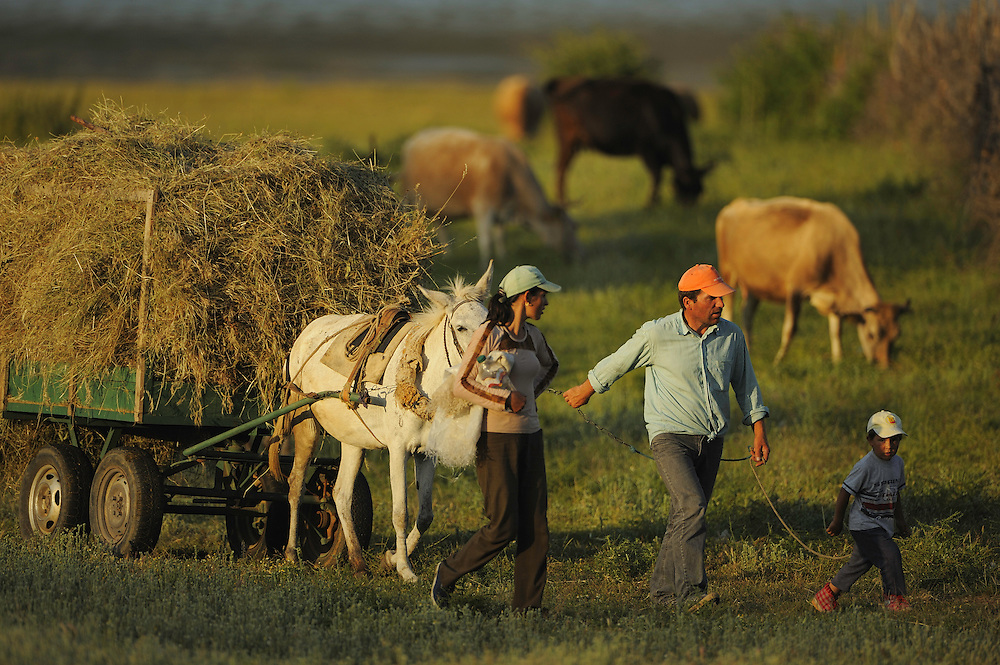Farming family going home in the evening after work in the fields. Lake Prespa National Park, Albania June 2009