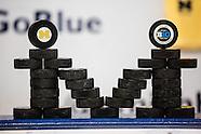 2013-14 Michigan Hockey