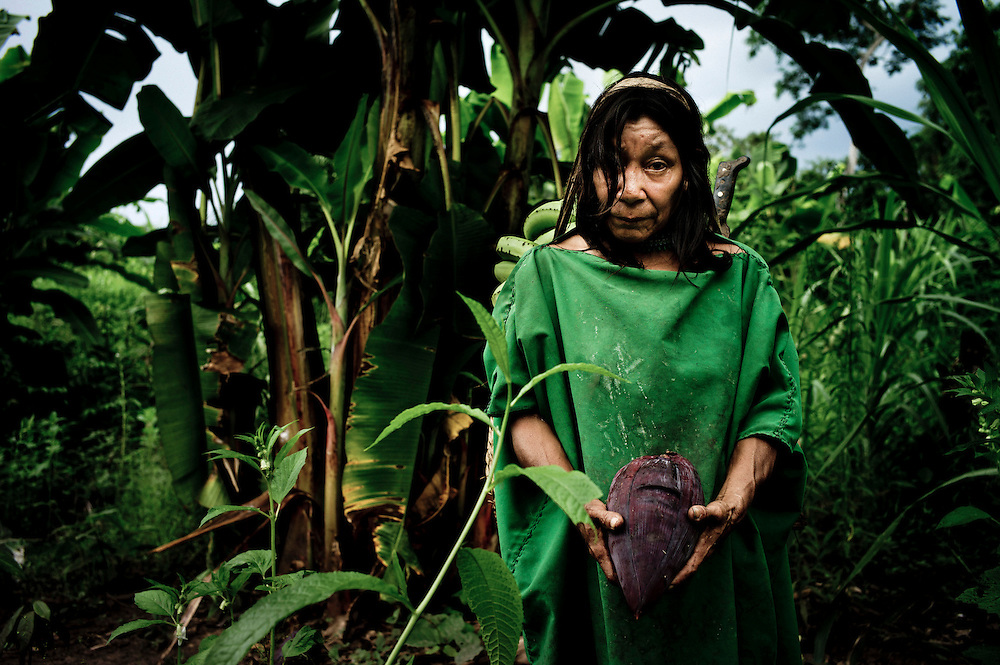Victoria Kubirinketu, an Ashaninka woman, walks back to her village after collecting bananas and a banana flower (in her hands). <br /> With encroachment from settlers and speculators, and after a devastating war against Shining Path rebels a decade ago, the indigenous Ashaninkas&rsquo; hold is precarious. And they are now facing a new peril, the proposed 2,200-megawatt Pakitzapango hydroelectric dam, which would flood much of the Ene River valley. The project is part of a proposal for as many as five dams that under a 2010 energy agreement would generate more than 6,500 megawatts, primarily for export to neighboring Brazil. The dams would displace thousands of people in the process. April 2012. Photo/Tomas Munita