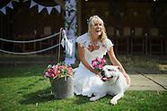 Karen & David Wedding