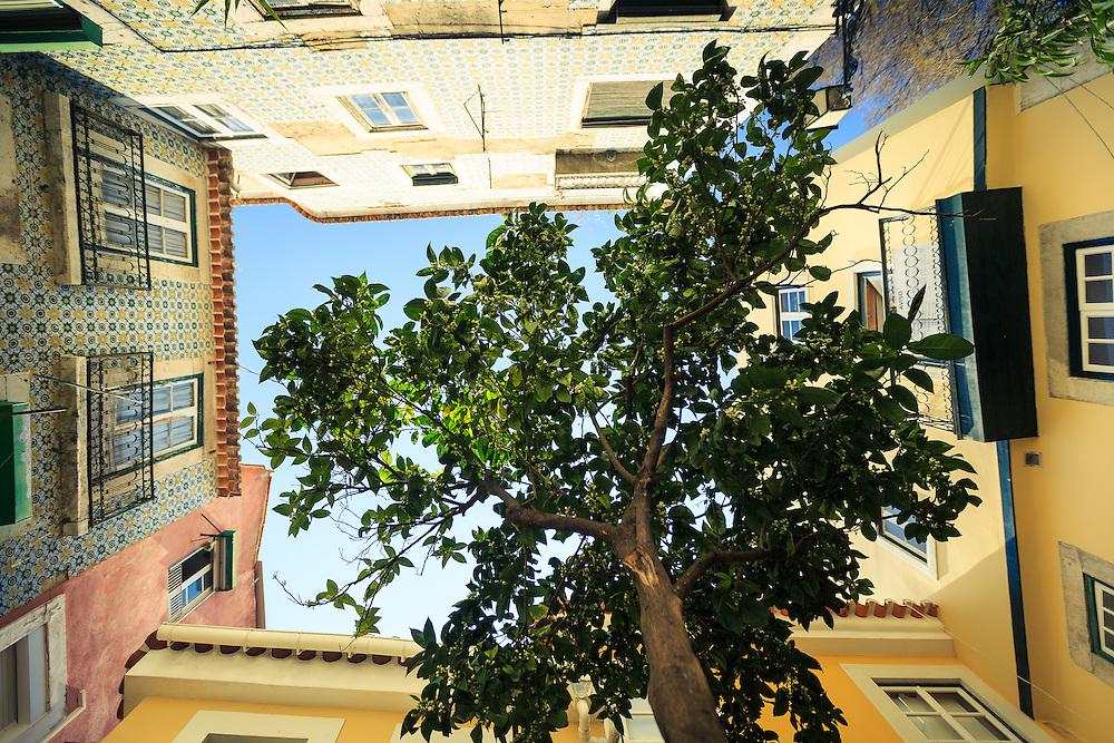 Alfama - Lisboa Walking in Alfama, Lisbon