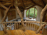 A house fit for a Hobbit: The homeowners that have brought the silver screen to life<br /><br />They are perhaps a sign that the owners have taken their obsession with the silver screen a bit too far. <br />But these homes from around the world built on movie themes are nonetheless stunning pieces of 'surreal estate'. <br />They include a tiny cottage based on the JRR Tolkien novel The Hobbit, the prequel to the Lord of the Rings saga and a Flintstones home apparently carved inside a boulder.<br /><br />Simon Dale designed the Middle Earth inspired dwelling, which is actually in Wales, as he sought to create an affordable house that blends into the hillside.<br />As well as its movie appeal, the house, which is made from an oak frame and has a roof comprising mud and turf, has green credentials too.<br />Underground air cools the refrigerator, solar panels power the appliances and a nearby spring provides water for the house.<br /><br />Photo Shows: Tucked into a hillside, the home uses oak framing, which bolsters a roof composed of mud and turf.<br />©Simon Dale/Exclusivepix