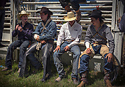 Cowboys wait for the day's competition to get underway during the Falkland Stampede Falkland, B.C. (2017)